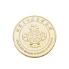 New Design Custom 24K Gold Plating Metal Challenge Coins